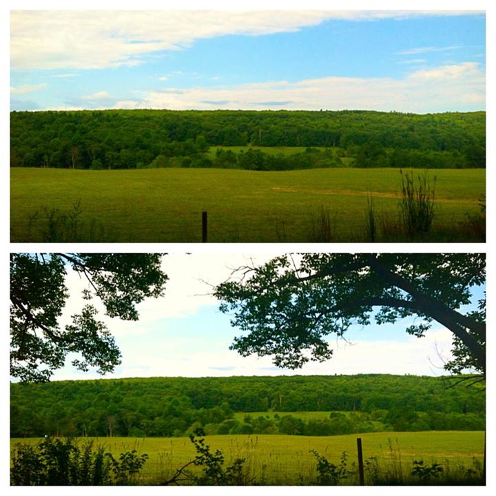 Driving by Walker Farm at Whortleberry Hill in New Braintree, MA